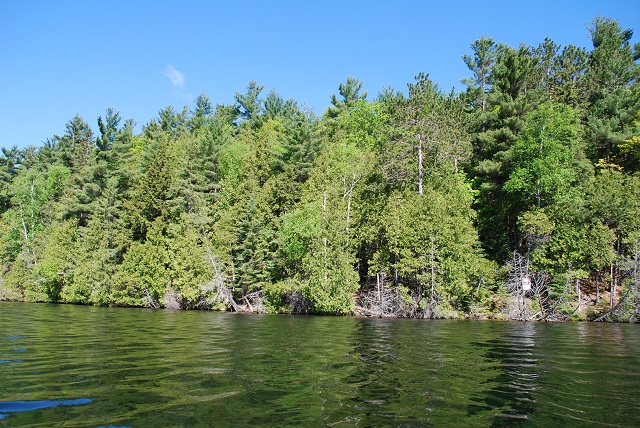 Palmerston Lake Lot Building Lot Acreage North Frontenac Gurreathomes