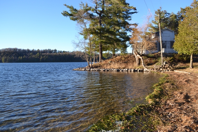 4407 Westport Road Wolfe Lake Waterfront Cottage Acreage Gurreathomes