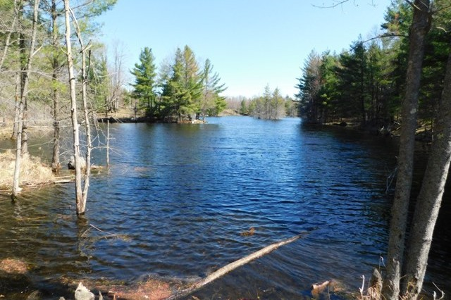 Devil Lake Road Lot, South Frontenac, Ontario, Gurreathomes.com