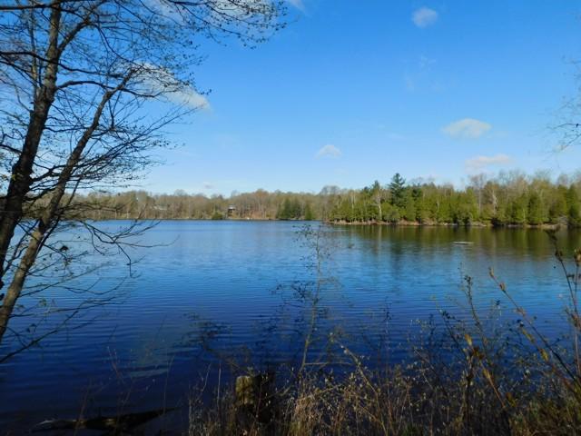 Teresa Lane Lot, St. Andrew Lakes, Westport, Rideau Lakes, Gurreathomes.com